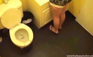 Code of practice Toilet column